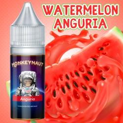 Aroma MONKEYNAUT - Anguria