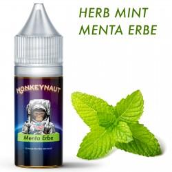 Aroma MONKEYNAUT - Menta Erbe